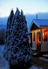 Is it X-mas yet? (nikkorglass) Tags: xmas snow lights twilight sweden firstsnow snö 50mmf14 ljus skymning lampor d700