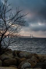 Evening by the Bridge (Infomastern) Tags: bridge sea people bro hav resundsbron resundsbron mnniskor resundbridge