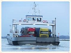Wilhelm Krooss (v8dub) Tags: ferry river germany deutschland boat rivire bateau fluss allemagne schiff elbe fleuve wilhelm niedersachsen glckstadt wischhafen hamelwrden krooss