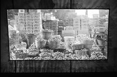 les fruits dorment (gguillaumee) Tags: canada film night analog silent market quebec montreal grain jeantalon nikonf3 translucid argentic kodaktrix1600 nikkor50mm