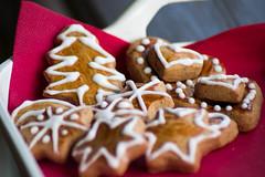 Gingerbread (Emese Ruzsa) Tags: