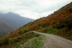Where the road goes (s_gulfidan) Tags: road autumn trees sky mist mountain 400faves saariysqualitypictures