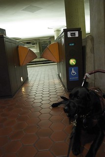D.C. Metro stop