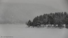 20150122069903 (koppomcolors) Tags: winter snow vinter sweden sverige scandinavia snö värmland varmland koppom skillingmark koppomcolors