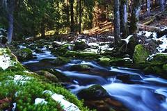 Spring in the mountains (pavel.suva) Tags: longexposure snow mountains nature water forest flow moss stream czechrepublic bohemia krkonose waterflow czechia