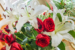 red and whites ll (pbo31) Tags: california flowers roses nature spring flora nikon may bayarea bunch bloom vase eastbay livermore pleasanton alamedacounty 2016 liles boury pbo31 d810