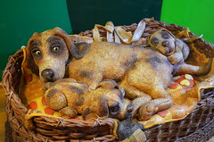 Marzipan Puppies [Szentendre - 6 December 2015] (Doc. Ing.) Tags: dog dogs puppy puppies hungary handmade marzipan hu craftsmanship szentendre 2015 marzipanmuseum centralhungary