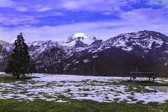 Mountain (cazador2013) Tags: arboles nieve banco cielo nubes turismo serenidad