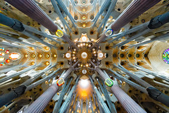 Sagrada Familia Ceiling (JeremyHall) Tags: barcelona art church architecture spain cathedral basilica explore goudi