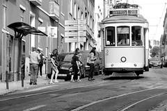 Tram (macresse) Tags: city blackandwhite downtown noiretblanc lisboa candid streetphotography tramway ville lisbonne photosderue