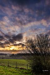 (EC*2) Tags: nature paysage limousin brume soleil couleur sunrise leverdesoleil matin ciel baladesetlieux chateauneuflaforet france hautevienne pentax