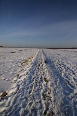Snow Tracks (joe_barton17) Tags: winter snow canon wideangle tokina 50d winterphotography canoneos50d canon50d 1116mm tokina1116mm