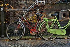 herfstkleuren-oudegracht (Don Pedro de Carrion de los Condes !) Tags: dutch utrecht herfst bikes trap fietsen hollands fiets kaden gracht kleurrijk zonlicht donpedro herfstlicht hekwerk herfstbladeren d700 dutchbikes steenjes