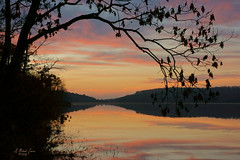 A New Day at Hand (G Michael Lewis) Tags: morning trees sky lake nature water silhouette forest sunrise reflections landscape outdoors dawn scenery missouri ozarks marktwainnationalforest cranelake