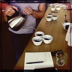 """cupping imperator 3 • <a style=""""font-size:0.8em;"""" href=""""https://www.flickr.com/photos/100654564@N04/15672396855/"""" target=""""_blank"""">View on Flickr</a>"""