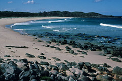 Beach near Cape Howe, Nadgee, 1985 (NettyA) Tags: summer film 35mm sand dunes australia slide pacificocean coastal bushwalking nsw scanned newsouthwales kodachrome 1986 1985 scannedslide capehowe farsouthcoast nadgee nadgeenaturereserve nswvictorianborder