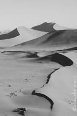 Art Attak! (cocciula) Tags: africa sunset bw panorama landscape tramonto dune ombre namibia viaggio vacanza deserto sabbia sossusvlei 2014 stupore namibdesert meraviglia incanto carboncino immenso duegiridiruote qualcosadiincredibile