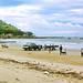 Front Beach Vung Tau 1967 - Photo by Bruce Tremellen