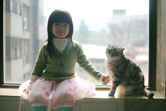 Friendship (Zorie Huang) Tags: morning family light portrait pet baby cute girl cat canon asian kid child friendship americanshorthair innocent taiwan dora staircase 5d lovely taiwanese holdhands threeyearold zorie