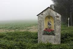 Borgo San Lorenzo, novembre 2014 (ma[mi]losa) Tags: 2014 mamilosa micheledefilippo