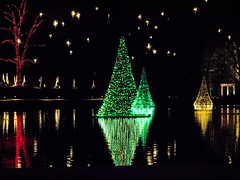 Lights in Reflection (rclatter) Tags: christmas olympus longwoodgardens em1 40150mm