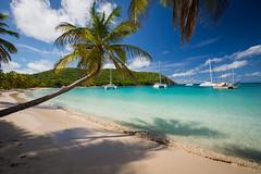 Salt Whistle Bay (_dChris) Tags: ocean sea beach island coast boat sand sailing yacht palm insel sail caribbean segeln kste palmen karibik caribbeanislands