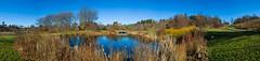 Beautiful Day at the Plantations (-Dons) Tags: sky panorama usa newyork water austin pond unitedstates tx pano cornell ithaca cornelluniversity cornellplantations