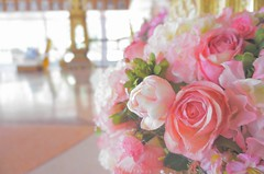 Roses (tippotamus) Tags: pink flower rose sweet fade bouquet