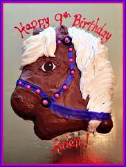 Horse cake by Amber, Triad, NC, www.birthdaycakes4free.com