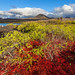 Ocean Spray: Galapagos hautnah erfahren
