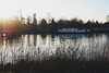 maastricht sunset (Jerlene Ng) Tags: winter light sunset sun nature water grass river maastricht boat ship thenetherlands maas hotelmaastrichy