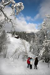 With a little help from my friends...Swiss winter time in the Jura mountains. No. 3602. (Izakigur) Tags: winter white snow topf25 schweiz switzerland nikon europa europe flickr suisse suiza swiss feel jura suíça nikkor svizzera neuchatel lepetitprince thelittleprince zaz dieschweiz joecocker romandie lachauxdefonds withalittlehelpfrommyfriends topf600 ilpiccoloprincipe lasuisse 100faves 200faves سويسرا 300faves 400faves nikond700 nikkor2470f28 izakigur