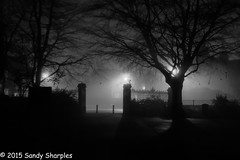 Slip into the Fog (Explored) (Sandy Sharples) Tags: park winter urban blackandwhite bw tree monochrome weather silhouette fog fence manchester streetlight gate noir january victoria stretford