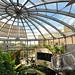 Sunderland Museum & Winter Gardens (7)