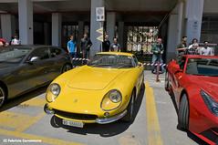 Ferrari 265 GTB (Fabry_C) Tags: auto yellow italia mechanical engine ferrari historic giallo rare scuderia supercar rara velocit maranello gtb 265 v12 motore sportiva cavallino rampante storica