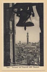 Panorama dal Campanile della Cattedrale (F)