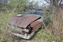 IMG_4227 (mookie427) Tags: usa car america rust rusty collection explore rusted junkyard scrapyard exploration ue urbex rurex