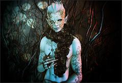 The Prince of Thorns (skye.nefekalum) Tags: minimal tfc remarkableoblivion thefantasycollective