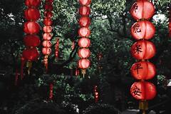 (Chaoqi Xu) Tags: china city travel bw white black architecture lanterne canon asian temple photography eos photo asia foto shanghai monumento buddha chinese beijing culture buddhism monastery hangzhou  lantern   fotografia      bianco nero viaggio   architettura cina   xu monastero citt  cinese beni chinesestyle 2016       culturali 600d buddismo  chaoqi