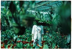 Somewhere we belong (Amy Chu :)) Tags: film 35mm minoltax700 faceless analogue kodakvision200