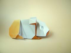 Guinea Pig - Mindaugas Cesnavicius (Rui.Roda) Tags: guinea pig origami papiroflexia mindaugas papierfalten cesnavicius