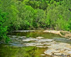 Turkey Creek (David Davila Photography) Tags: vacation tree water outdoor mo missouri branson geotag hollister 2016 tablerocklake nikond800 holuxm241