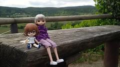 Excursión!!! (Ninotpetrificat) Tags: cute toys doll hobby lila kawaii figures juguete puppe muñeca wanderung kotobukiya excursión obitsu japantoy japandoll mamachapp japanfigure cupoche ikaduchi