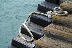 160614a2313 (allalright999) Tags: china canon pier dock harbour victoria powershot hong kong sha  tsim tsui    g1x