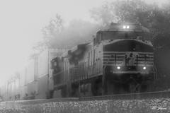 Foggy Norfolk Southern (19_Matt_79) Tags: railroad white black composite train dramatic transportation
