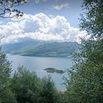 Loch Hourn Tree View thumbnail