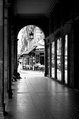 (www.tokil.it) Tags: paris france citt city ville centre center centro colonnato colonnade perspective prospettiva mendicante mendiant beggar senzatetto sansabri homeless carit charity charit biancoenero blackandwhite bw noiretblanc