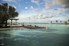 W-IMG_6171 (baroudeuses_voyage) Tags: ocean sea coral oz australia diving snorkeling cairns reef greatbarrierreef cay eastcoast australie atoll gbr michaelmascay oceanspirit grandebarrieredecorail