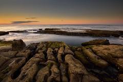 Rock Ripples (Paul Hollins) Tags: aus australia merewether newsouthwales nikond750 nikon1635mmf4 seascape rocks ocean lowtide