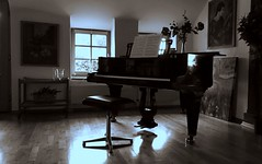 Always a Pleasure (❀ Rosemarie Christina ❀ [Slowly catching up]) Tags: hornungmøller piano pianopractice classicalpiano classical music musicinstrument grandpiano monochrome mono august artinbw